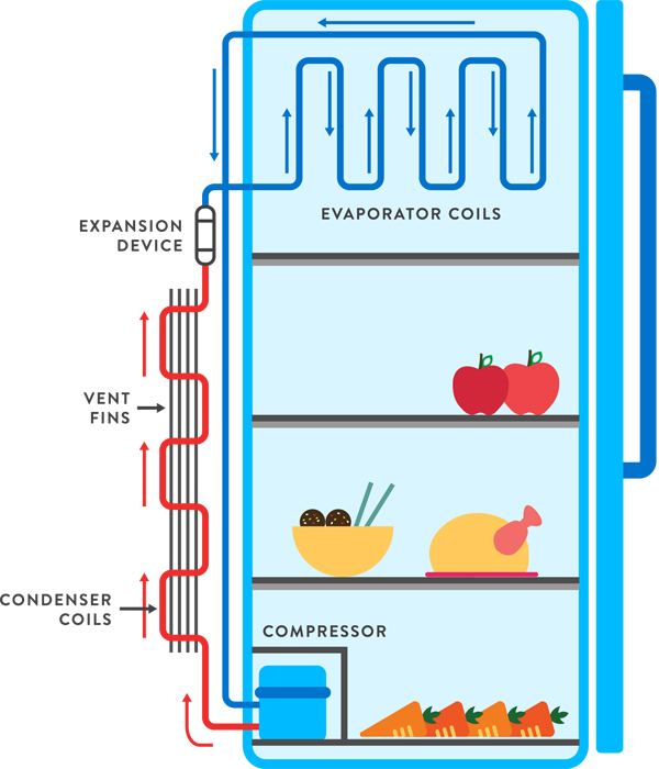 How Does A Fridge Work Fantastic Fridges IoR - Circuit Diagram Refrigerator